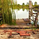 Old Tailem Bend Ferry Ramp, River Murray, South Australia by Mark Richards