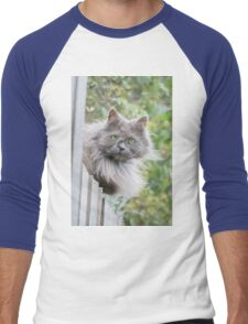 Cat sitting on fence (Clothing Products) Men's Baseball ¾ T-Shirt