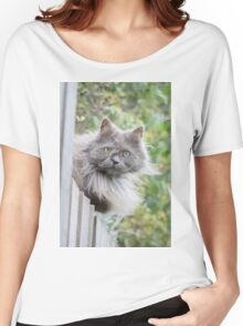Cat sitting on fence (Clothing Products) Women's Relaxed Fit T-Shirt