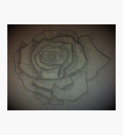 a great Rose Photographic Print