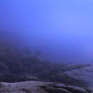 ocean fog by Marianna Tankelevich