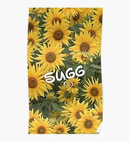 Sugg Sunflowers Poster