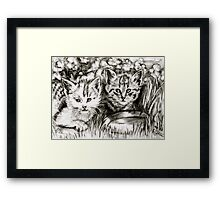 Baby Cats in the Garden Framed Print