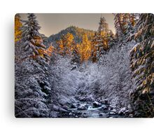 In All His Glory ~ Brice Creek ~ Canvas Print