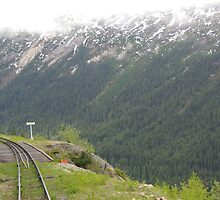 The View from the rear of the carriage White Pass Railway Yukon by Alison Murphy