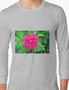 Pink rose close up and green leaves. Long Sleeve T-Shirt