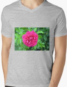 Pink rose close up and green leaves. Mens V-Neck T-Shirt