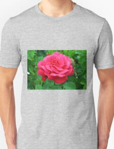 Pink rose close up and green leaves. Unisex T-Shirt
