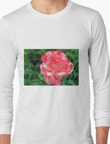 Macro on beautiful pink flower in the garden. Long Sleeve T-Shirt
