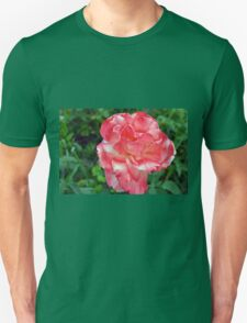 Macro on beautiful pink flower in the garden. Unisex T-Shirt