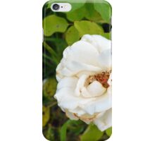 White rose and green leaves pattern. iPhone Case/Skin