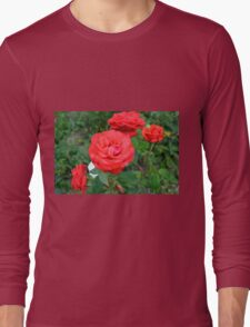 Red roses, natural background. Long Sleeve T-Shirt