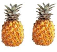 4 Pineapples Sticker