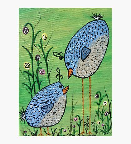 Crazy Blue Birds Photographic Print