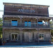 Antique Inside and Out by Martha Sherman