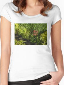 Gardening Delights - Miniature Creek with Red Primrose Women's Fitted Scoop T-Shirt
