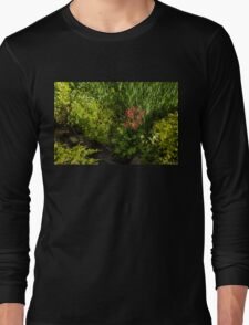 Gardening Delights - Miniature Creek with Red Primrose Long Sleeve T-Shirt