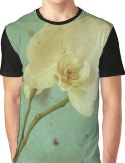 Morning Glory Graphic T-Shirt
