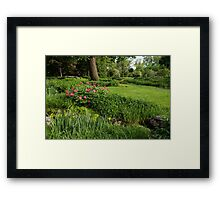 Gardening Delights - Vigorous Greens and Blooming Peonies Framed Print