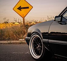 5.0 Mustang Dropped Notchback  by Shayera