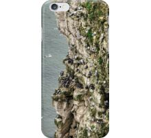 Bempton Cliffs iPhone Case/Skin