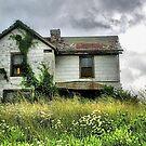 Anybody Home???? by billium