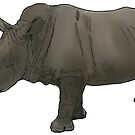 Rhino by Colin Bentham
