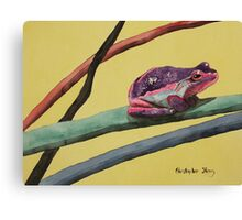 Coloured frog lives in a coloured world Canvas Print