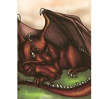 Sleeping Dragon Photographic Print