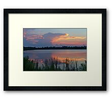 gator cloud Framed Print