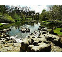 Irish Japanese garden Photographic Print