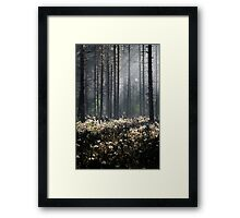 9.6.2014: Wild Rosemary Flowers in Forest Framed Print