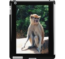 African monkey - Print iPad Case/Skin