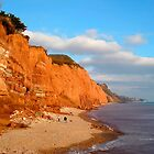 The Red cliffs of Sidmouth by Charmiene Maxwell-batten