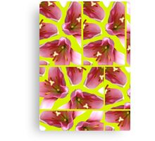 Tulips Squared Canvas Print