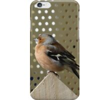 Bird on the fence iPhone Case/Skin