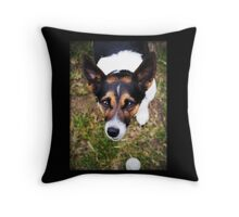 Jessie the Jack Russell Terrier: It's All About the Ball Throw Pillow