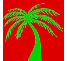 green palms on red sky Photographic Print