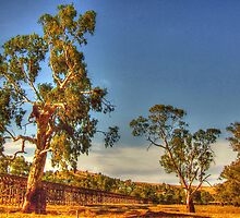 Gundagai Gums & Railway Bridge by Michael Matthews