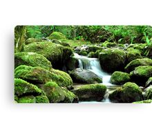 a piece of heaven on earth Canvas Print