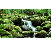 a piece of heaven on earth Photographic Print