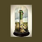 Godisnowhere - Frogs in a Dome by Peta Duggan
