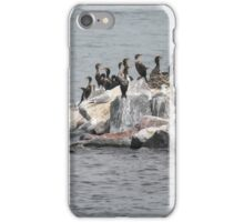 cormorant on river iPhone Case/Skin