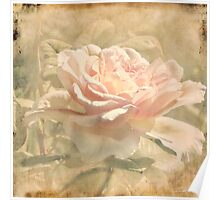Secondhand Rose Poster