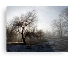 Willow in the Mist Metal Print