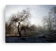 Willow in the Mist Canvas Print