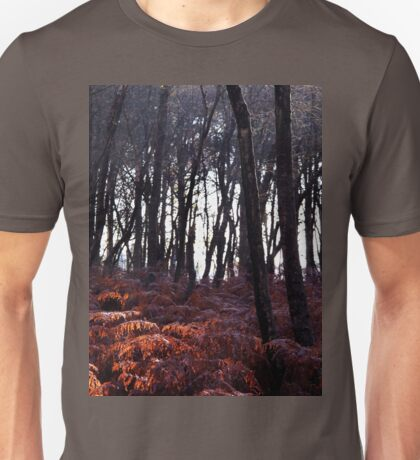 Autumn Morning - Bucklebury T-Shirt
