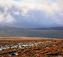 The Mountains of Wicklow by Chris L Smith