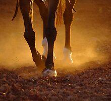 Rusty Old Legs by Penny Kittel