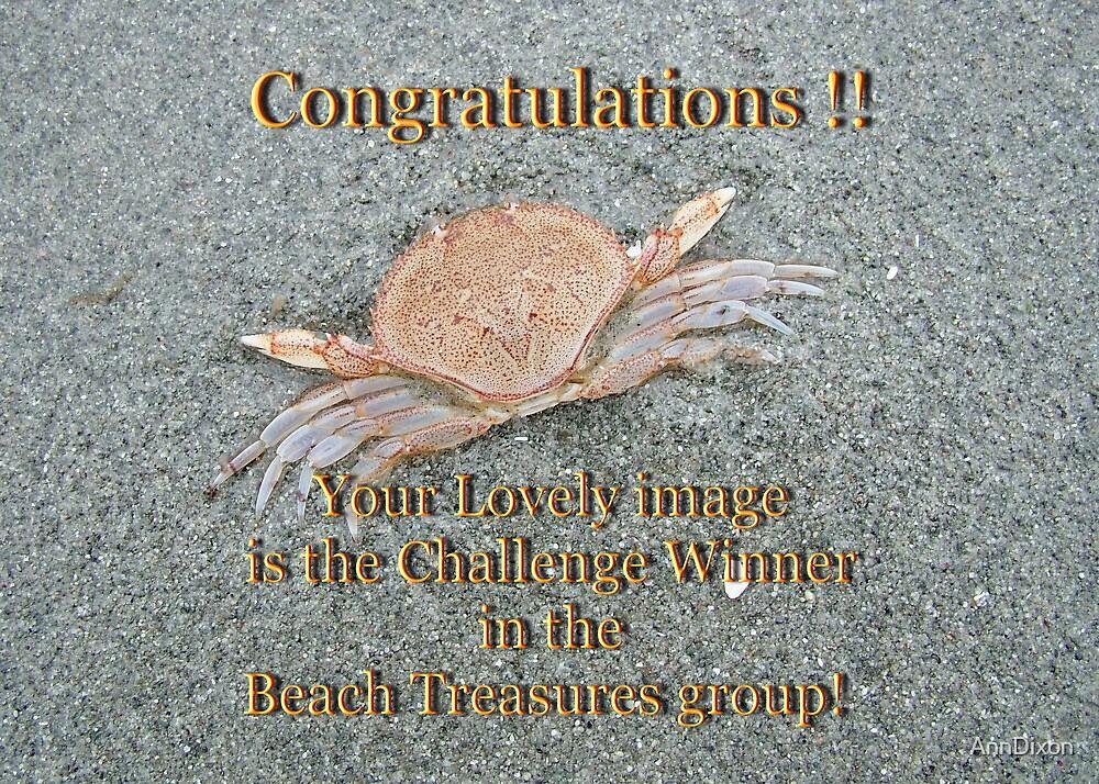 BANNER - Beach Treasures Group by AnnDixon